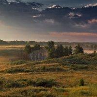 Доброе Утро... :: Сергей Гульгас