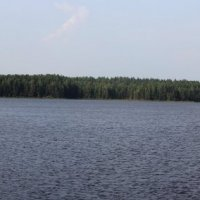 Климковский пруд... :: Александр Широнин