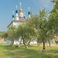 Введенская Макарьевская Жабынская Пустынь. :: Виктор Евстратов