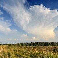 Соло облака на струнах гитары...)) :: Владимир Хиль