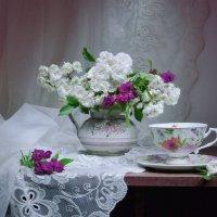 Мини розы... :: Валентина Колова