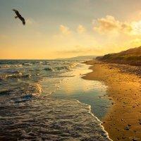 Солнце последний искрящийся штрих... :: Игорь Сарапулов