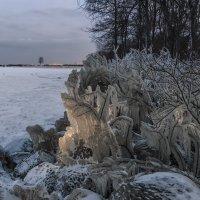 Однажды на Финском заливе :: Владимир Колесников