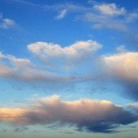sky :: Екатерина