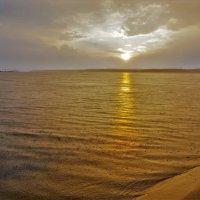 Солнце и дождь :: Валерий Талашов