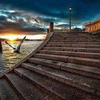 крылья заката.. :: Константин Водолазов