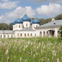 У стен Юрьева монастыря :: Олег Фролов