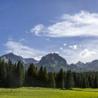 Здравствуйте, альпийские луга! :: Gennadiy Karasev