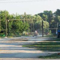 В деревне летом :: Любовь Бутакова