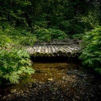 Старый мост :: Ирина Антоновна