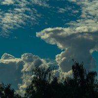 Облачное небо :: Александр Витебский
