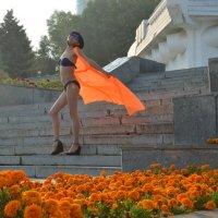 Бабочка :: Вероника Подрезова