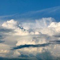 Эти летние облака :: Юрий Савинский