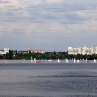 Панорама Левого берега. :: Чария Зоя