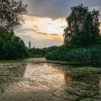 Летний вечер у пруда. :: Александр Селезнев