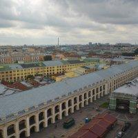 С высоты башни городской думы :: Наталья Левина