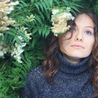 в цвету :: Наталья Сазонова