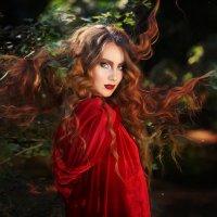Красная шапочка :: Наталья Ремез