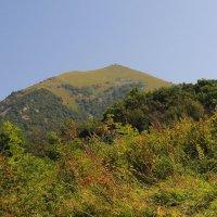 г. Бештау. Вершина Большой Тау. Вид с юго-западного склона. :: Vladimir 070549