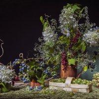 Натюрморт с ягодами :: Ольга Дядченко