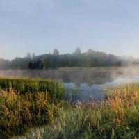 Последние капли тумана на рассвете :: Татьяна Копосова