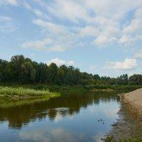 Река Чумыш :: Николай Мальцев