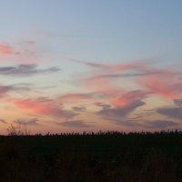 Липецкое небо :: Евгения Виноградова