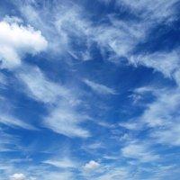Cirrus clouds :: Олег Шендерюк