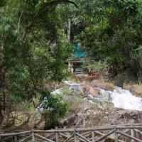 В окрестностях Далата. Природный парк Датанла с водопадом. :: Виктор Куприянов