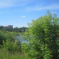Летом у озера :: Елена Семигина
