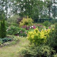 Территория обители ухожена, всюду посажены цветы, кусты :: Елена Павлова (Смолова)