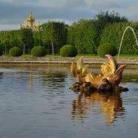Золотые рыбки Петергофа :: Olcen - Ольга Лён