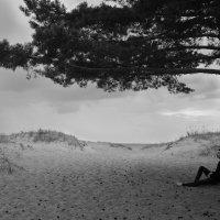 Одиночество :: Ketrin Darm