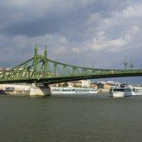 Зеленый мост... :: Cергей Павлович