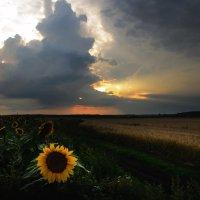 На закате непогода :: Вера