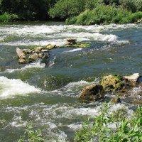 Река Дон (Липецкая область) :: Yulia Deimos
