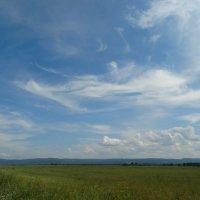 Сибирские просторы :: Alla Swan
