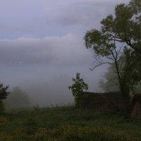 Туман :: Алексей Дмитриев