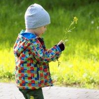 цветочек для мамы :: Олег Лукьянов