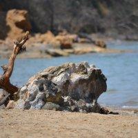 Море, песок и камень :: Тамара Мадюдина