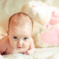 Маленькая зайка :: Алёна Колесова