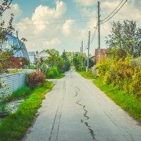 Дорога в садовом обществе :: Света Кондрашова