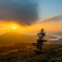 Утро на Драгобрате :: ViP_ Photographer