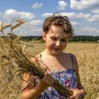 На пшеничном поле. :: Анатолий. Chesnavik.
