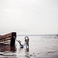 Озеро Дривяты. :: Сергей Гончаров