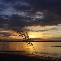 Алтай Сикачи.Горько-соленое озеро :: Алексей Моргачёв