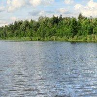 река Березина, Беларусь :: Виктор _