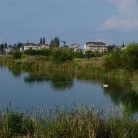 Озеро рукотворное.... :: Диана Богдан