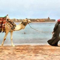 Вдоль берега... :: Demian
