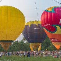 Фестиваль воздушных шаров. :: Виктор Евстратов
